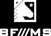 bfms.png